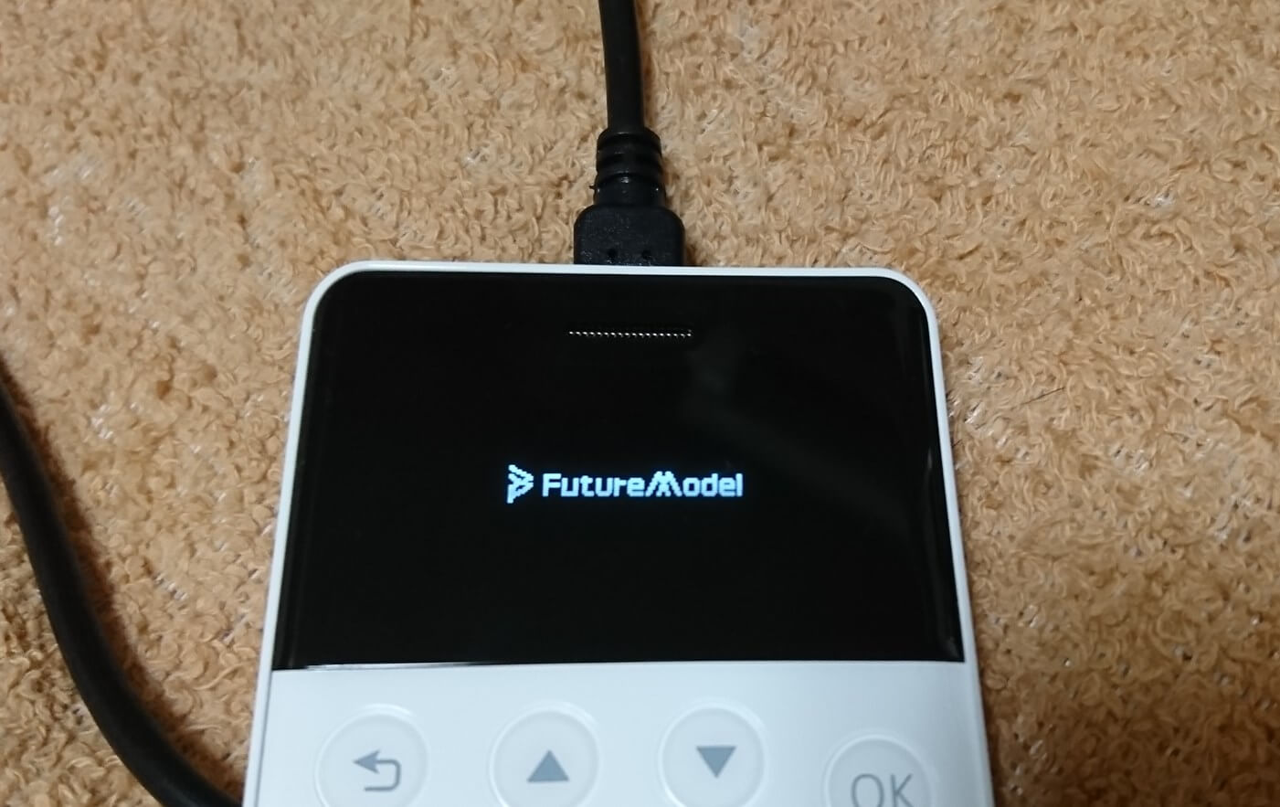 niche_phone_s_logo_future_model_inc