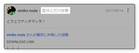 google-plus-emiko-noda-limited-release