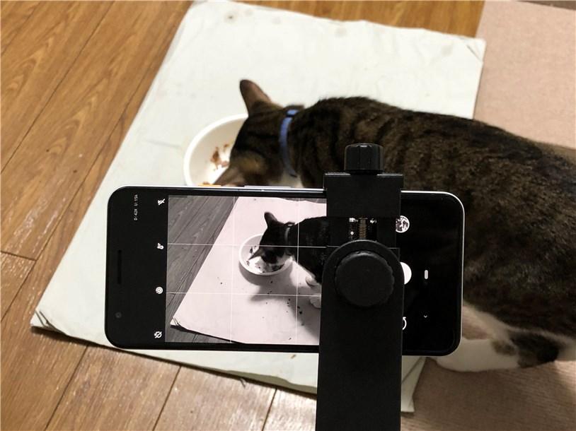 Pixel 3aの「おやすみモード」で画面がモノクロに