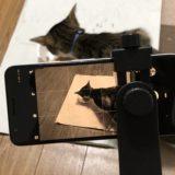 Pixel 3aの「おやすみモード」と「夜間モード」を使って写真を撮る