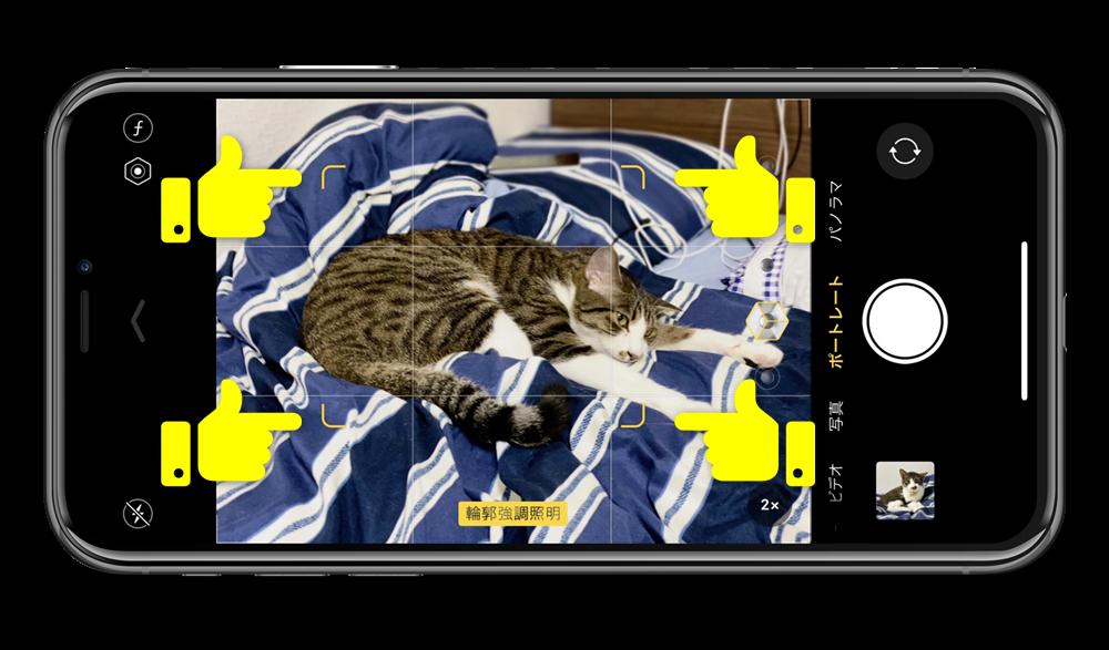 iPhone11proのポートレートで猫を認識しているところ