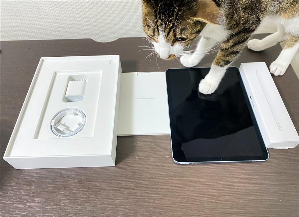 iPadAir4の中身(同梱物)