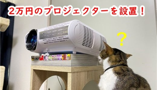2万円の家庭用プロジェクターを設置したらQOLが爆上がりした話
